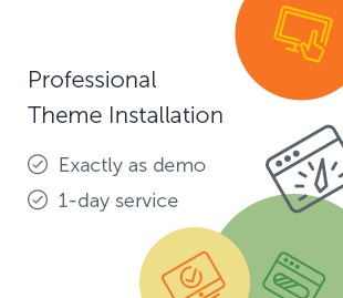 Professional Theme Installation
