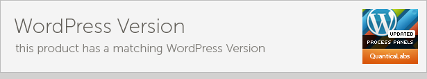 WordPress Version this product has matching WordPress Version PROCESS PANELS