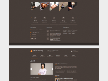 Themis WordPress Theme