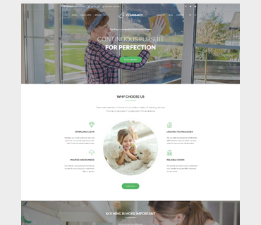 Cleanmate WordPress Theme